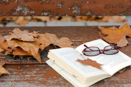 Book and red glasses on   bench in autumn park. Stock Photo