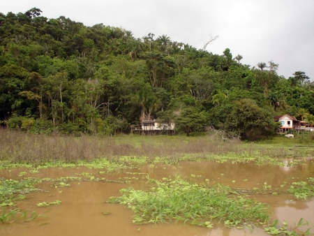 a settlement deep in the amazon