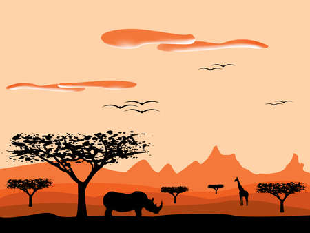 savanna sunset in africa