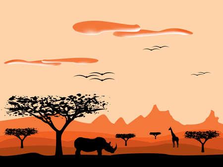 savanna sunset in africa