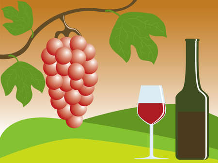 vector illustration of ripe grapes and wine Vector