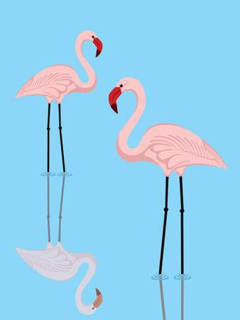 flamingi: ilustracja para różowych flamingów, w jeziorze