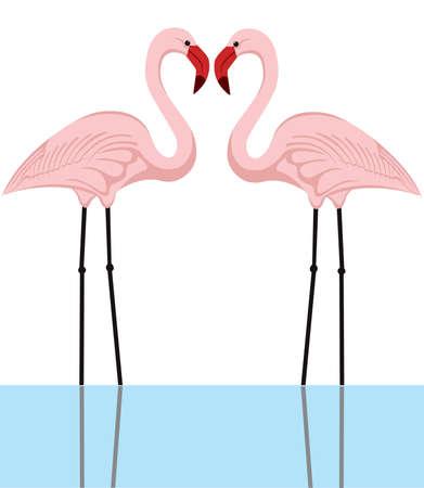 subtropics: illustrazione di una coppia di fenicotteri rosa in un lago Vettoriali