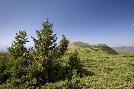 Mountain landscape with deep blue sky. Location: Bulgaria, Balkan Mountains Range, peak Kom