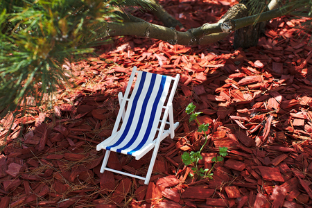 A toy striped beach chair for sunbathing and relaxing is standing in the shade under a bonsai tree on a hot sunny day, sawdust and red tree bark are lying on the ground, garden decoration Banque d'images - 125336170