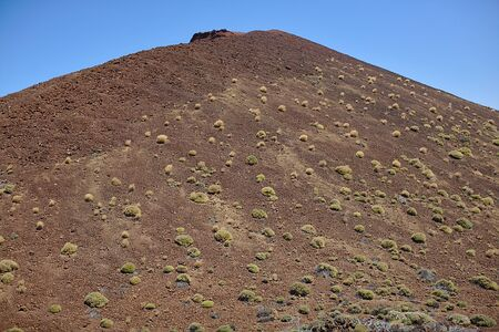 Big cliff in a national park, in the mountains, landscape with plants, texture, Tenerife