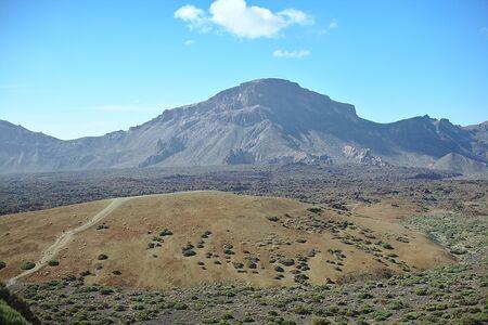 Nature dans le désert, buisson, montagnes, îles, pierres et buissons, plantes sous le soleil brûlant, montagne rouge, parc du Teide.