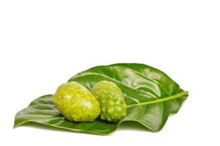 great morinda: close up of fresh noni on white background.