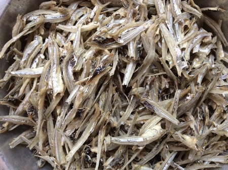 sales person: Dried fish display in a seafood market. Stock Photo