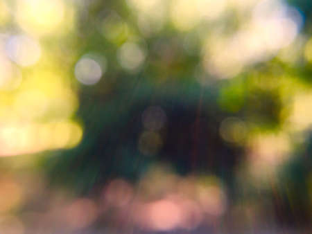 abstract: Abstract green bokeh background