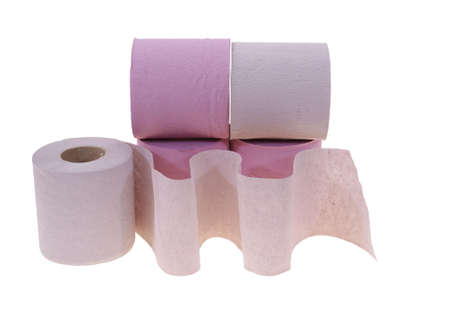 developed: convoluted and developed toilet roll isolated on white background
