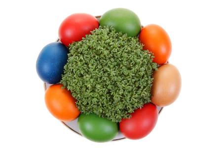 colorful eggs with cress isolated on white background photo