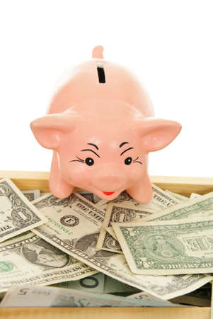 trough: pink piggy near trough with money on white  background
