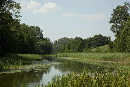 calamus: Masuria  scenery summer with calmly flow water