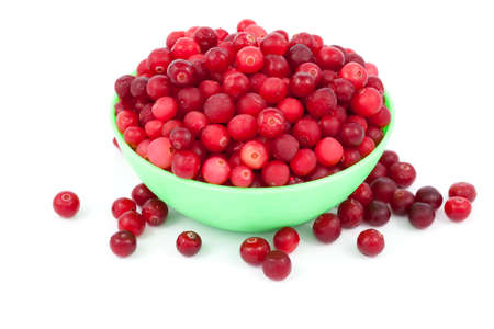 vaccinium macrocarpon: frozen cranberry in green bowl on white