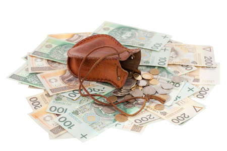 spilled: spilled coins with  money-bag on banknotes