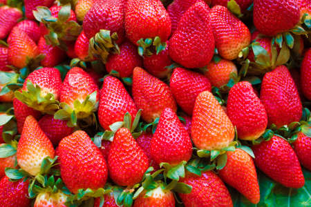 Fresh Juicy Strawberries at the Market
