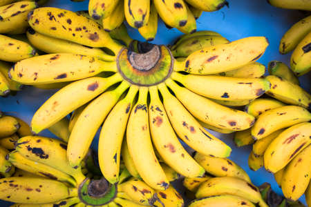 Cluster of Fresh Natural Bananas at the Market Фото со стока - 153990618