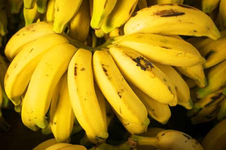 Cluster of Fresh Natural Bananas at the Market Фото со стока - 153990318