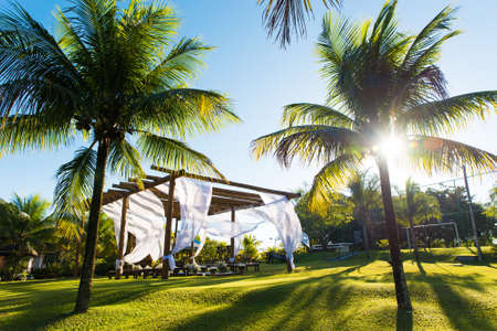 Beautiful Brazilian Style Outdoor Wedding Ceremony Set Up Between Palm Trees by Sunset