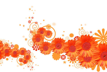 gerber daisy abstract background Stock Photo - 2671686