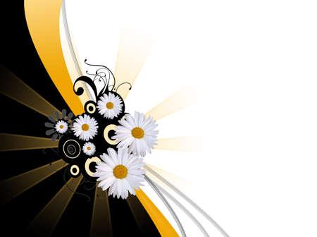 daisy ornate background Stock Photo - 2671675