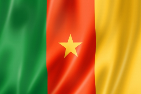 Cameroon flag, three dimensional render, satin texture Stock Photo - 14282838