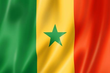 Senegal vlag, driedimensionale render, satijnen structuur