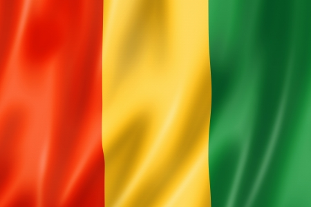 guinea: Guinea flag, three dimensional render, satin texture