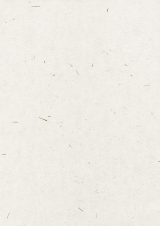 Natural recycled paper texture Standard-Bild