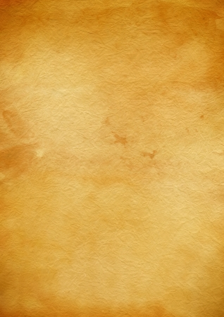 blanck: Old grunge parchment paper texture Stock Photo