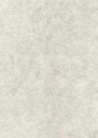 papier naturel: Naturel n�palais recycl� fond la texture du papier