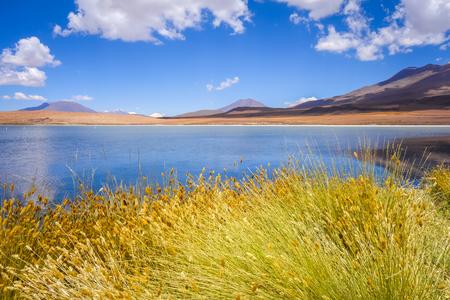 Altiplano laguna in sud Lipez reserva Eduardo Avaroa, Bolivia Stock Photo
