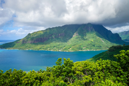 Aerial view of Opunohu Bay and lagoon in Moorea Island. French Polynesia