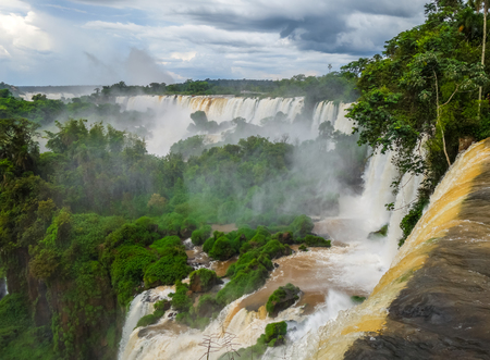 unesco: iguazu falls national park. tropical waterfalls and rainforest landscape