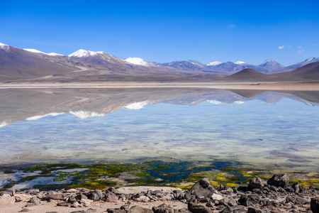 avaroa: Clear altiplano laguna in sud Lipez reserva Eduardo Avaroa, Bolivia