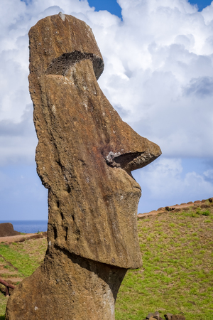 Moai statue on Rano Raraku volcano, easter island, Chile