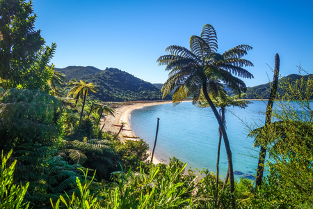 Abel Tasman National Park. White sand bay and turquoise sea. New Zealand