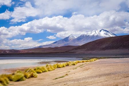 avaroa: Laguna in sud Lipez Altiplano reserva Eduardo Avaroa, Bolivia