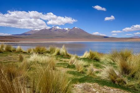 avaroa: Altiplano laguna in sud Lipez reserva Eduardo Avaroa, Bolivia Stock Photo