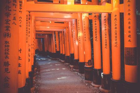 Fushimi Inari Taisha torii shrine, Kyoto, Japan