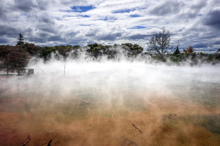 Hot springs lake in Rotorua park, New Zealand