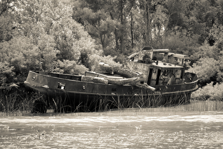 Old rusty boat on the Tigre river Delta. Buenos Aires Stock Photo