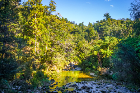 Cleopatra pools waterslide in Abel Tasman National Park, New Zealand Stock Photo