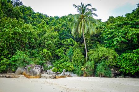 Teluk Pauh paradise beach in Perhentian Islands, Terengganu, Malaysia