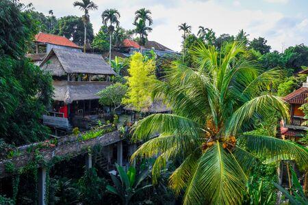 Traditional houses in jungle, Ubud, Bali, Indonesia Stock fotó