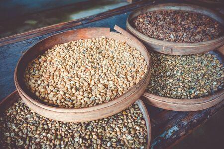 Kopi Luwak coffe beans close-up, Bali, Indonesia