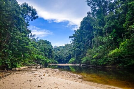 River in Jungle rainforest. Taman Negara national park, Malaysia Stock fotó