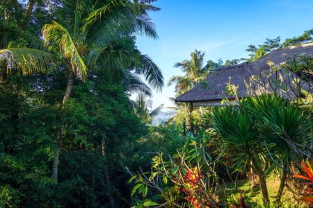 Traditional house in jungle rain forest, Sidemen, Bali, Indonesia