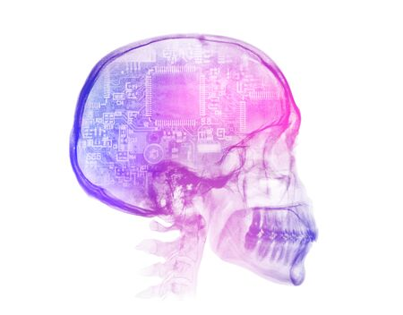 Human skull X-ray image. Artificial intelligence futuristic concept. White background Stockfoto